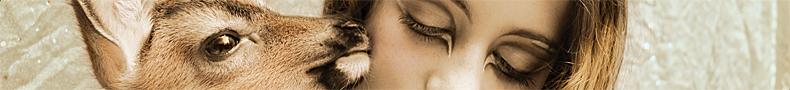 MIROIR MAGAZINE • Animalia