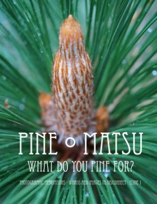 Pine ● Matsu